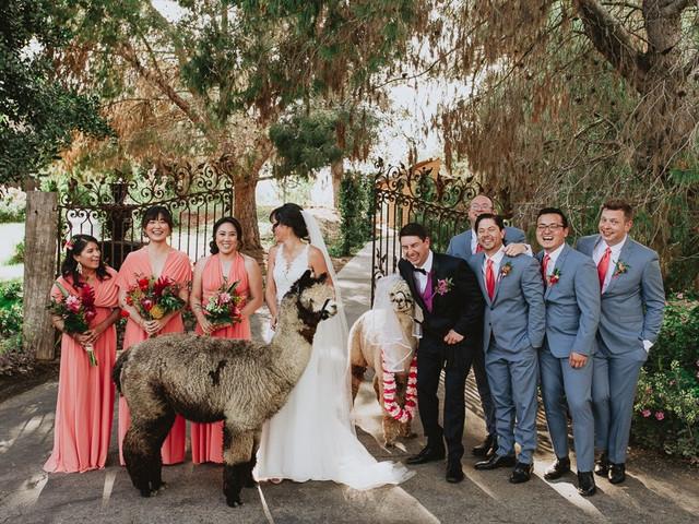 Guia para avaliar os fornecedores do casamento