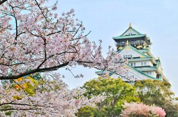 Lua de mel no Japão: tudo o que não podem deixar de visitar