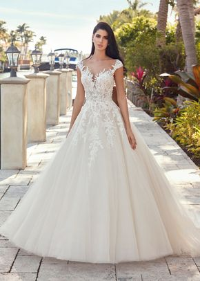 DP448, Demetrios