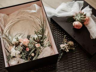 O casamento de Ana e Diogo 1