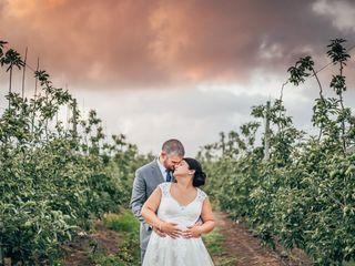 O casamento de Anita e Alexandre