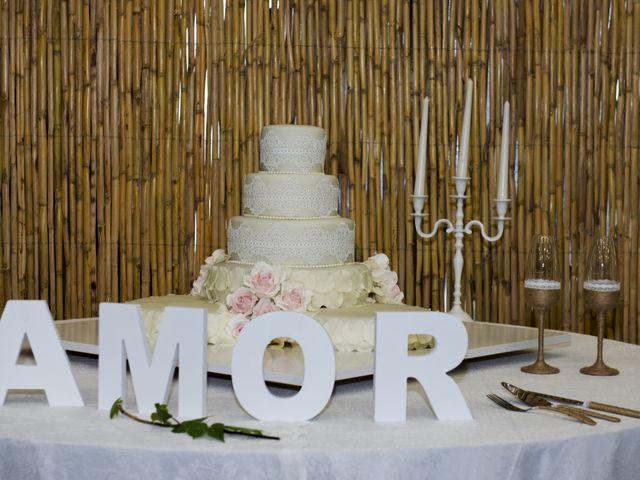 O casamento de David e Nadine em São Teotónio, Odemira 8