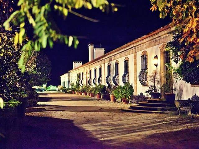O casamento de Paulo e Inês em Vila Real, Vila Real (Concelho) 12