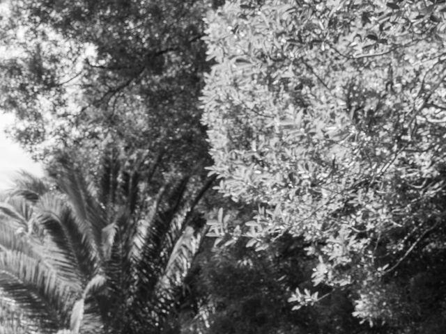 O casamento de Ricardo e Marta em Albergaria-a-Velha, Albergaria-a-Velha 52