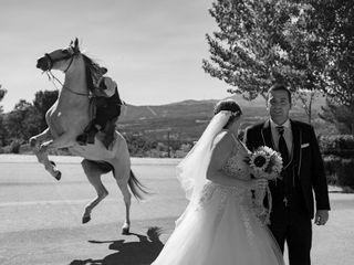 O casamento de Stéphanie e Ricardo