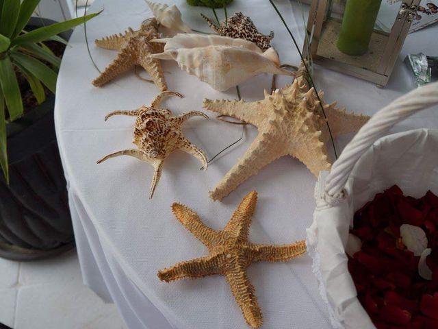 O casamento de Valter e Cátia  em Almada, Almada 15