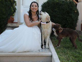 O casamento de Sara e Diogo 2