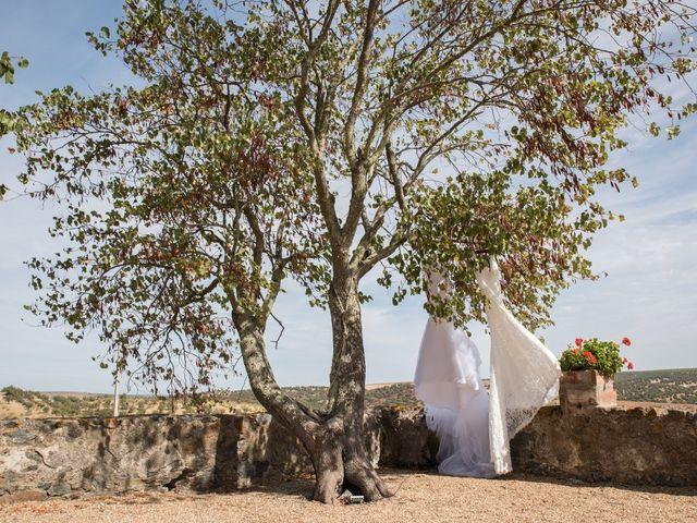 O casamento de Pedro e Liliana em Beja, Beja (Concelho) 15