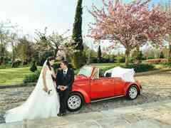 O casamento de Sofia e Luis 5