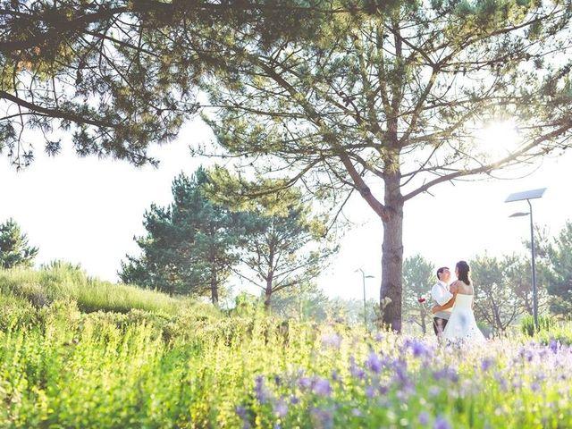 O casamento de Pedro e Diana em Estarreja, Estarreja 1