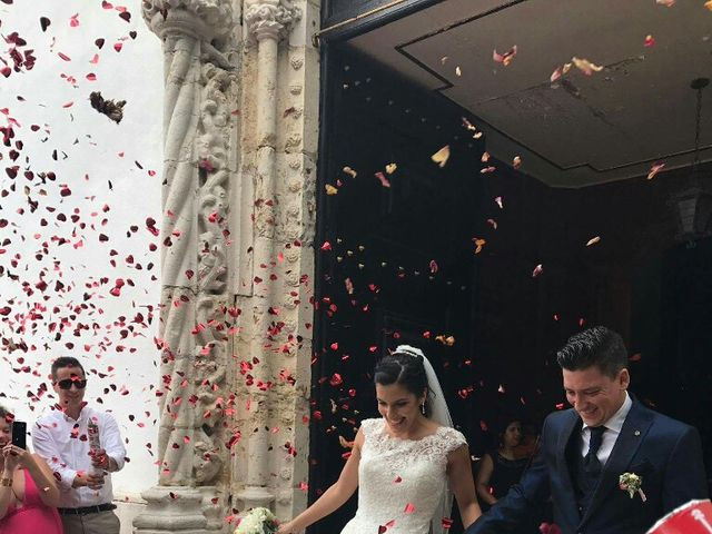 O casamento de Tiago e Susana em Setúbal, Setúbal (Concelho) 9