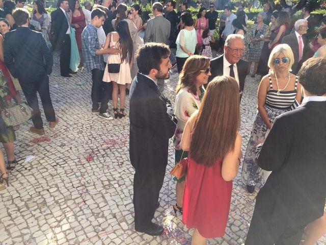O casamento de Paulo e Ana em Curia, Anadia 7
