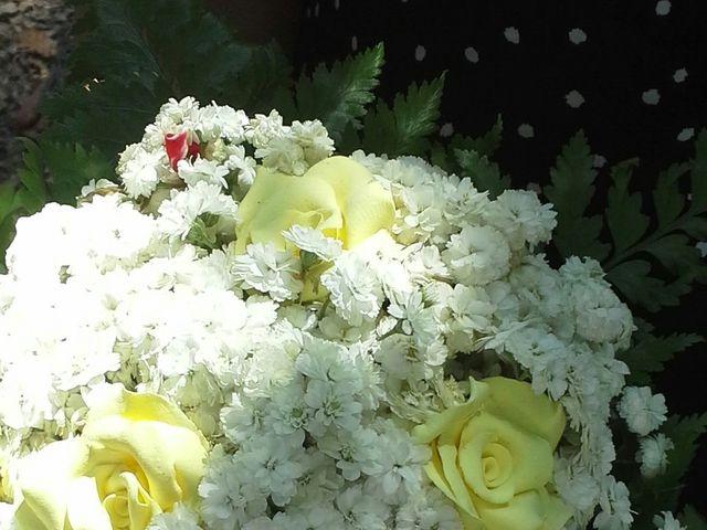 O casamento de Alexandre e Katia em Alquerubim, Albergaria-a-Velha 6