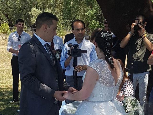 O casamento de Luís e Rita em Samora Correia, Benavente 5