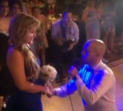 O casamento de Adriano e Bernadette em Vila do Conde, Vila do Conde 9