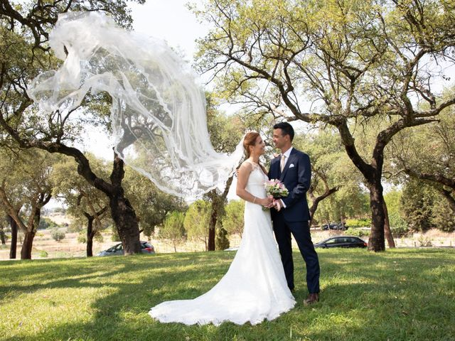 O casamento de João e Nélia em Castelo Branco, Castelo Branco (Concelho) 18