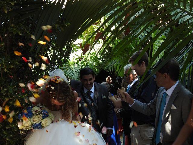 O casamento de Marco e Carina em Queluz, Sintra 14