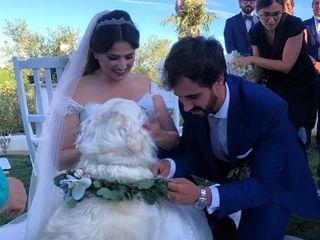 O casamento de Andressa e João 2