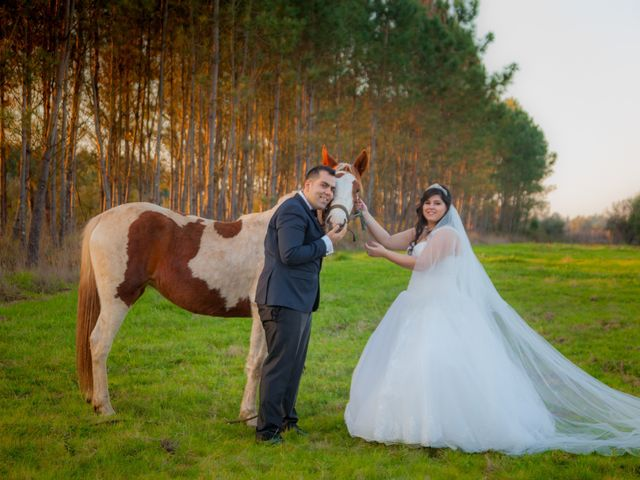 O casamento de Filipe e Patricia em Cantanhede, Cantanhede 31