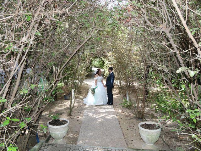 O casamento de Sérgio e Patrícia em Palmela, Palmela 112