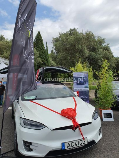 Tesla Portugal Tours