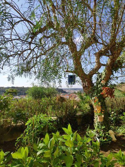Jardim lateral com vista
