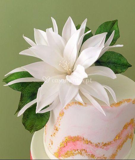 Flor de cacto