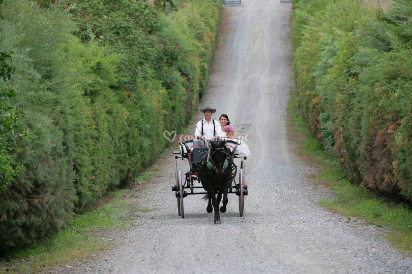 Noiva no Trem sec.XIX