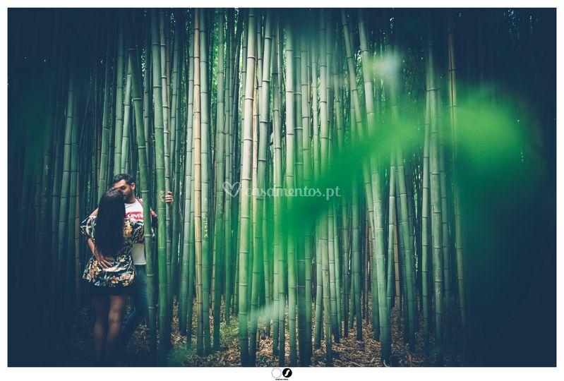 Love In Jungle
