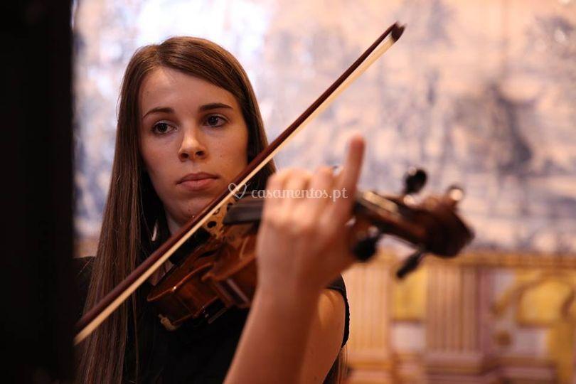 Violinista - vânia bajão
