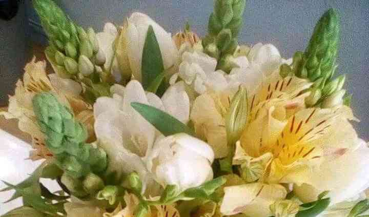 Bouquet de sonho
