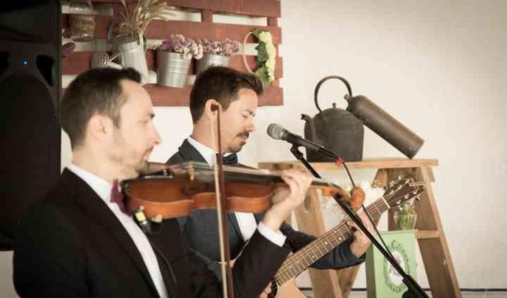 Viola & Violino - Recepção