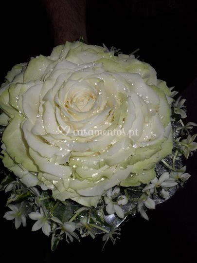 Ramo noiva (rosmelia)