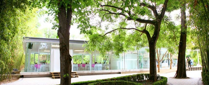 Quinta de Santo António do Freixo