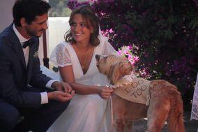 Para Sentir - Vídeos de Casamento