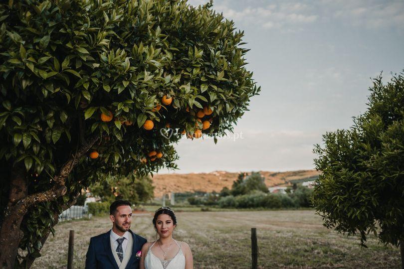 Wedding P&A
