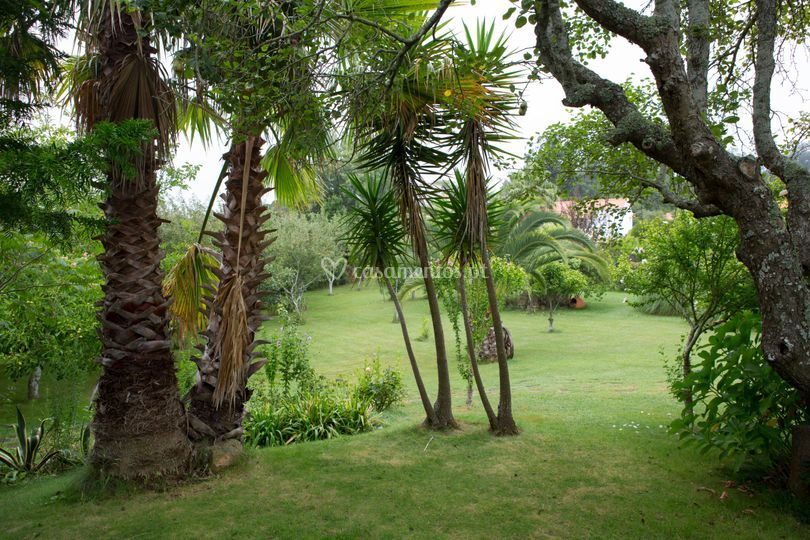 Quinta da Mata Velha