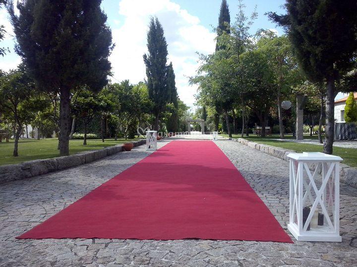 Quinta Thiagos