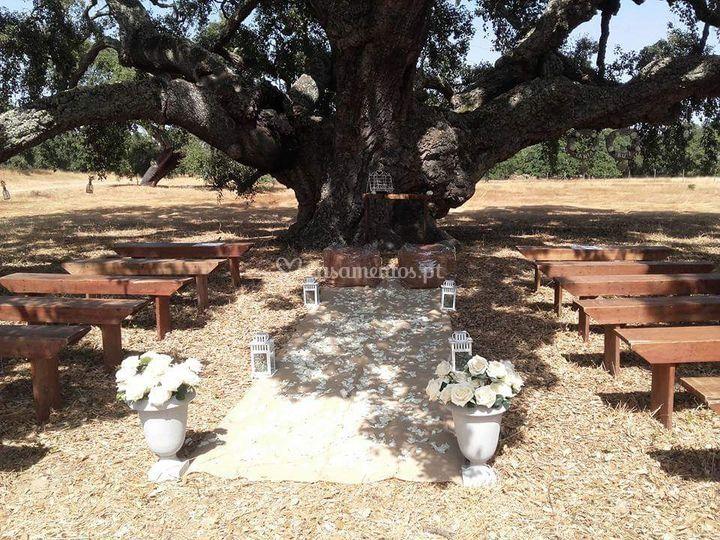 Altar de casamento