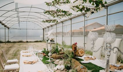 Green House Events