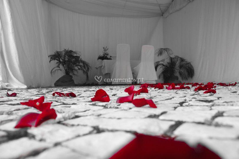 Cerimónia noivos