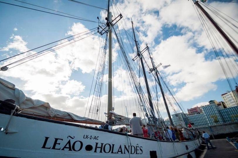 Leão Holandês