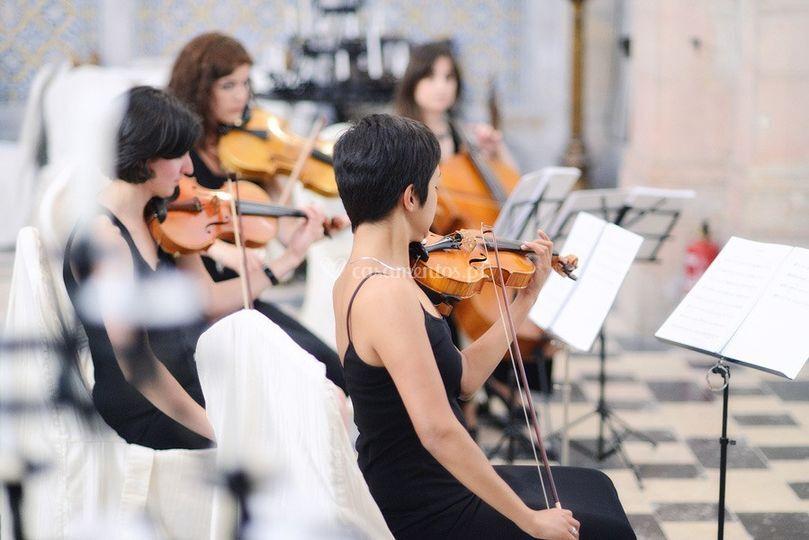SQS na Penha Longa de String Quartet Solutions