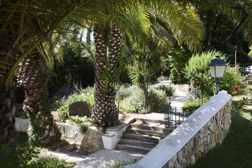Jardim das aromáticas