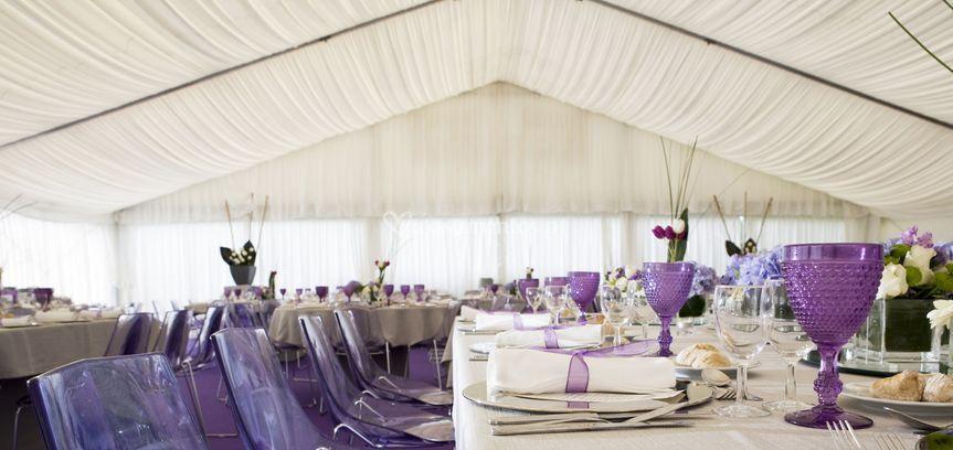 Ambiente Purple