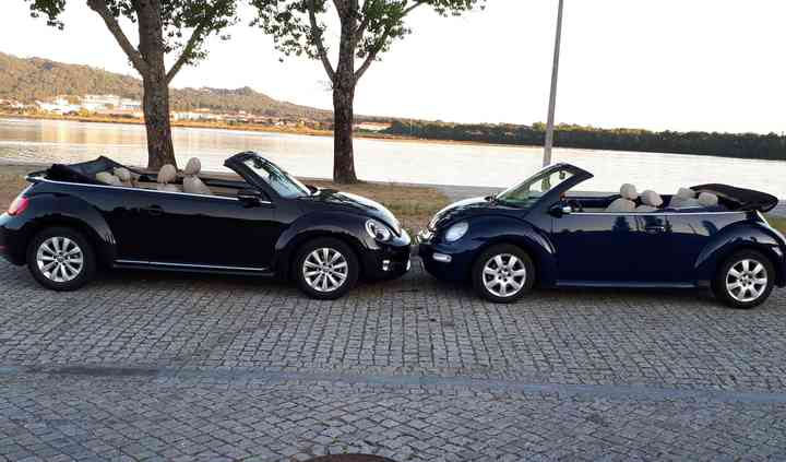New Beetle's Mania