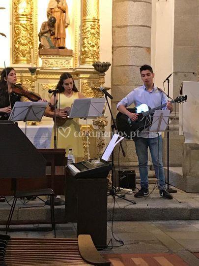 Violino, ukulele, guitarra