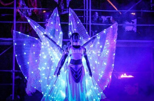 Led wing brancas