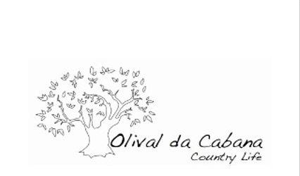 Olival da Cabana - Country Life 1