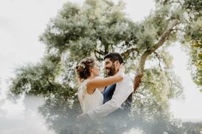 Wolf Wedding Stories